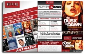 Netflix Agency Pitch